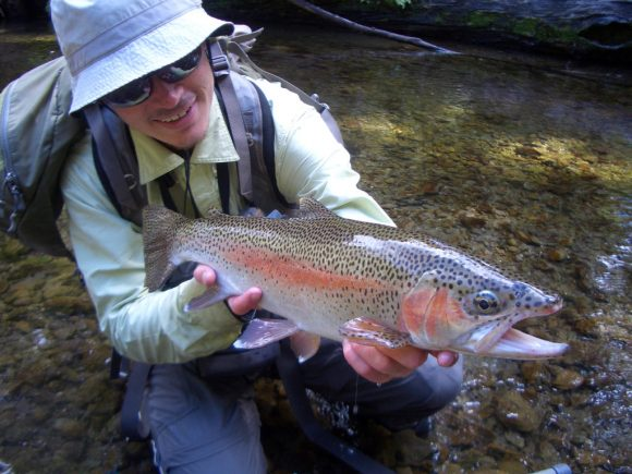 CIMG4449.jpgsized 580x435 Photos of Flyfishing for trout in the amazing Te Urewera National Park, New Zealand