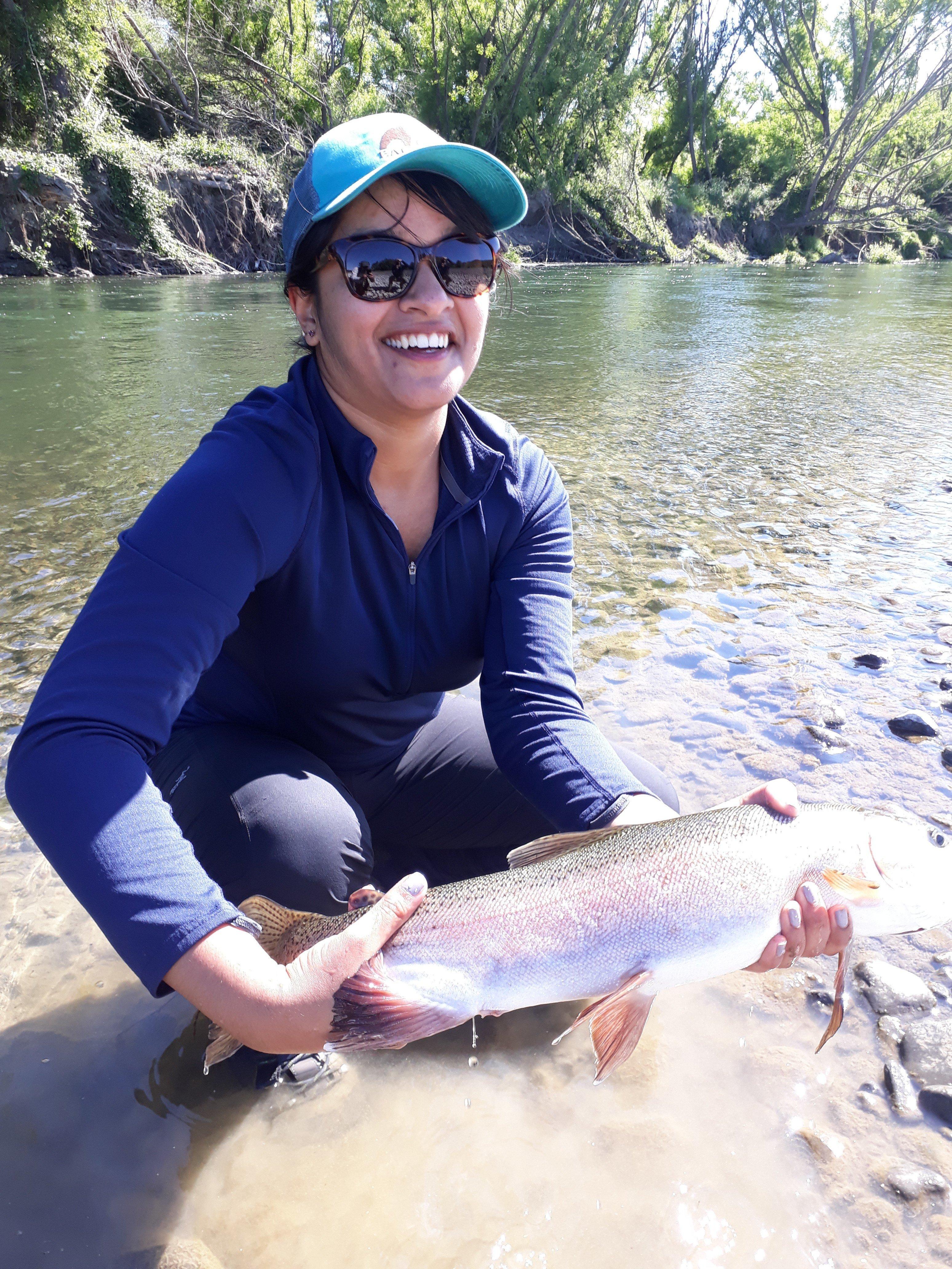 Enjoying Hawkes Bay trout fishing